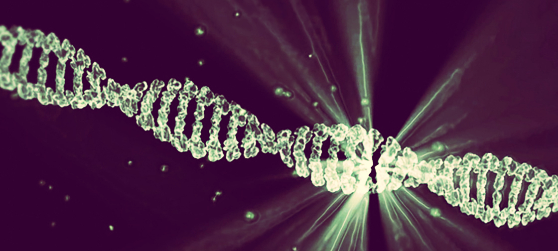 dna_everything_is_connected