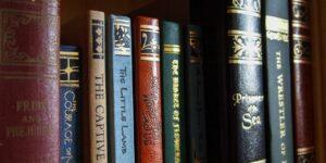 books book shelf