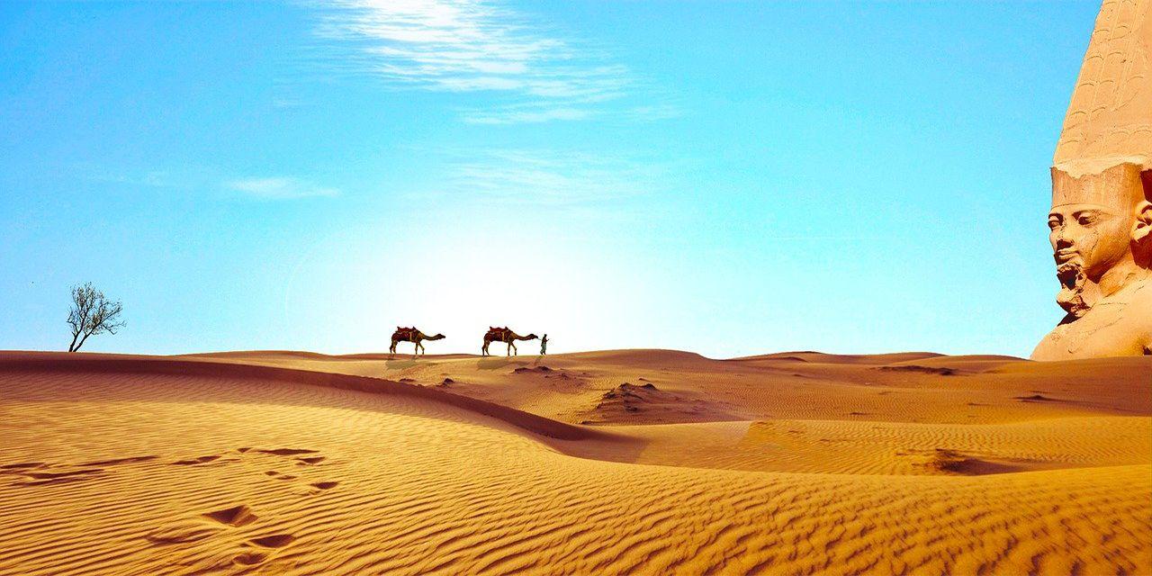 Egypt Sahara Desert Dry Camel Temple