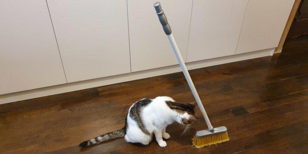 Standing broom challenge