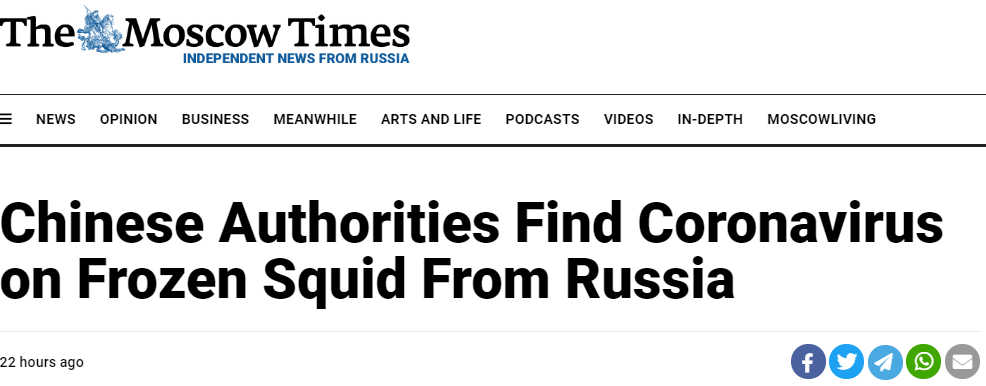 Screenshot from the Moscow Times