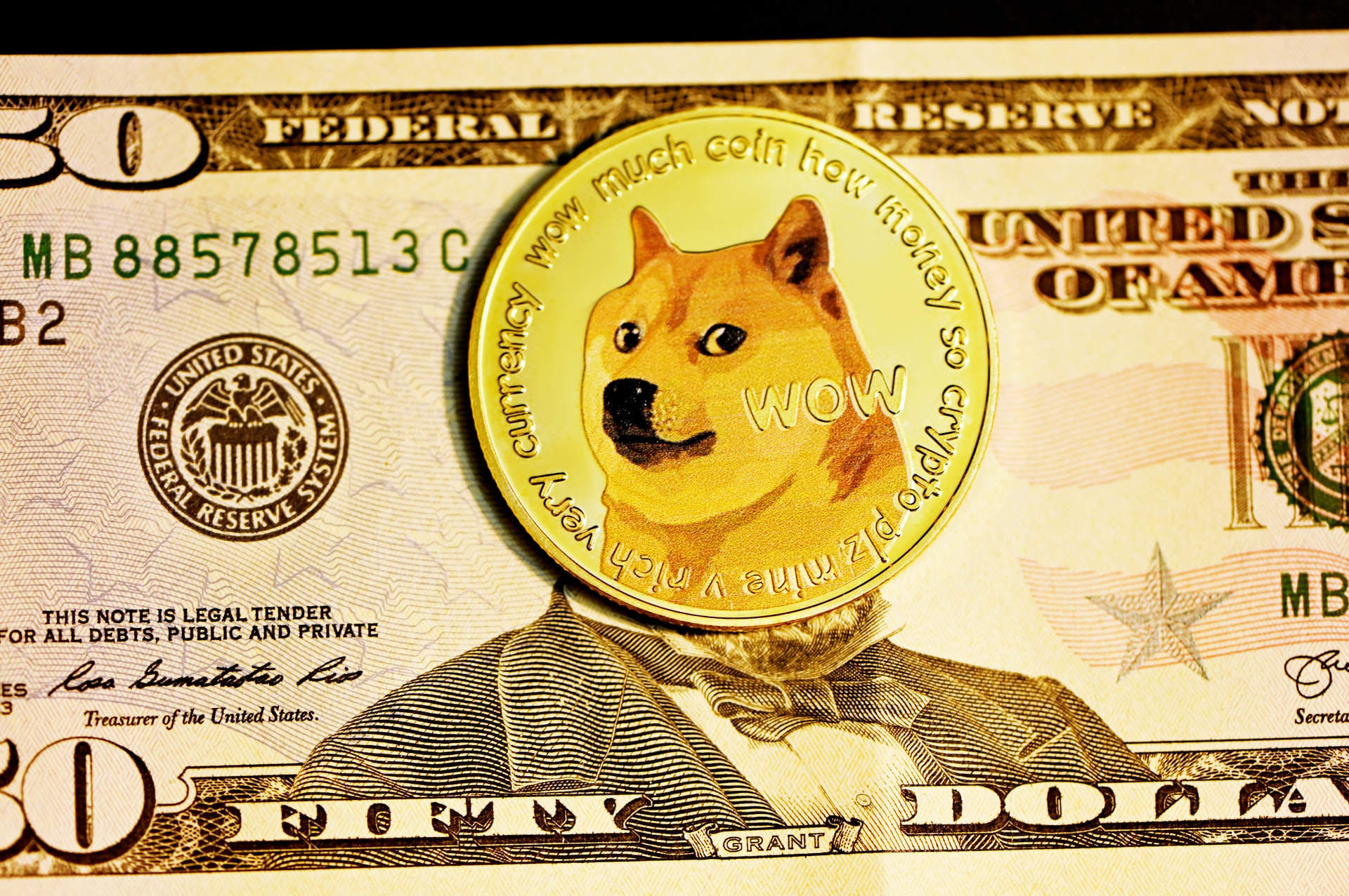 Doge coin bank note