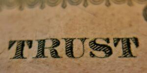 trust word skin list
