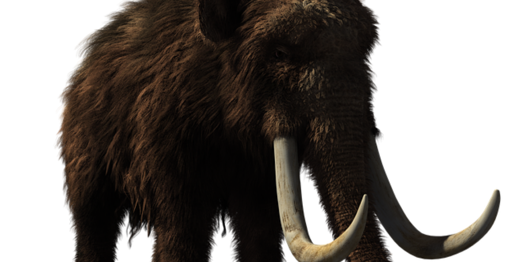 Woolly Mammoth Animal Prehistoric Wildlife 3d